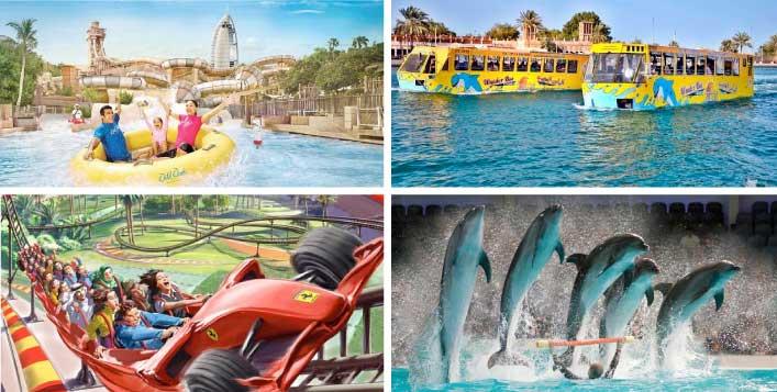 Wonder Bus Tour with Adventure Park Tickets