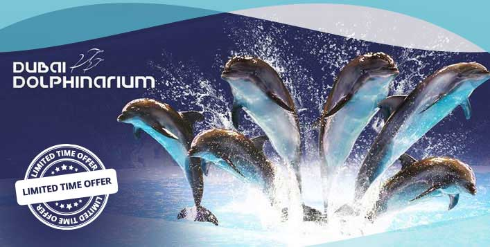 Tickets to Dolphin, seal & illusion show