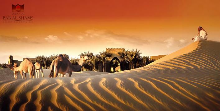 Bab Al Shams Desert Resort Stay & Meals