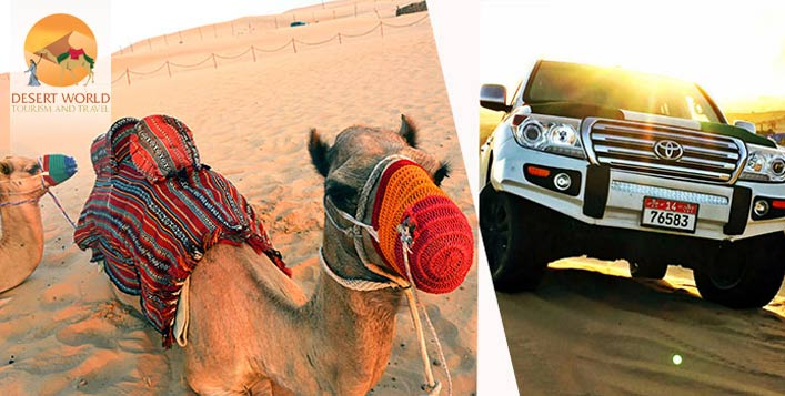 Desert Safari by Desert World Tourism