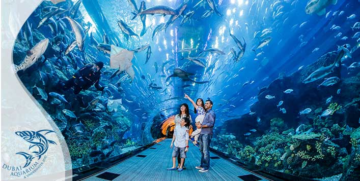 Dubai Aquarium & Underwater Zoo Passes