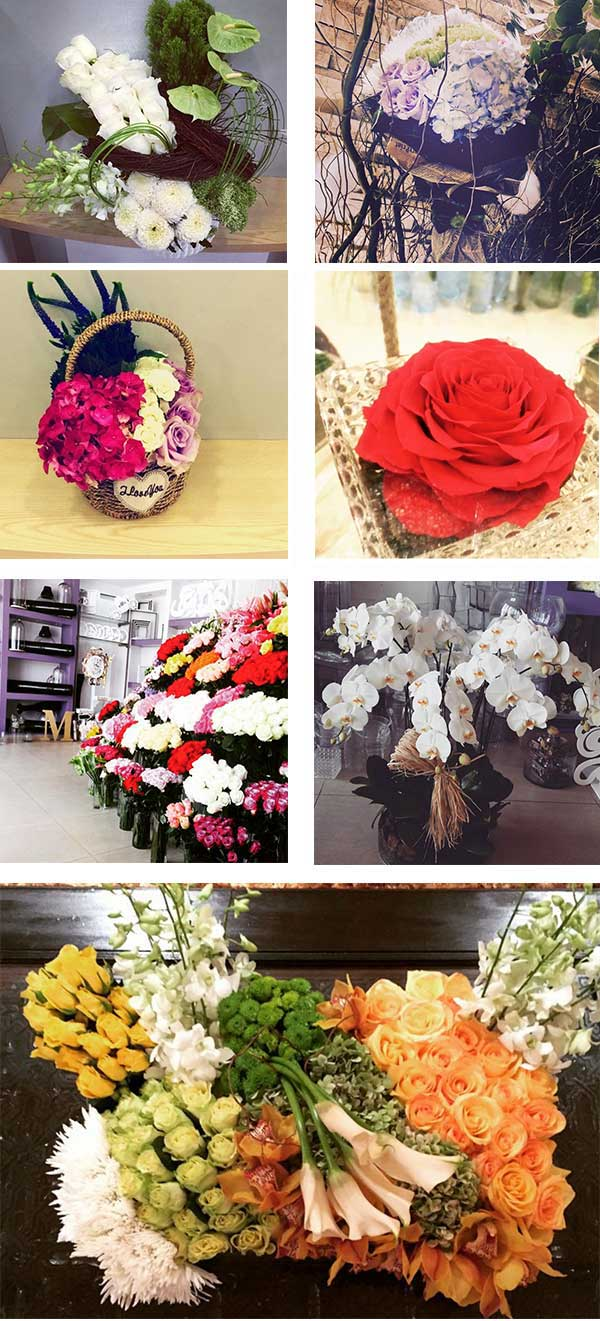 25 Discount On Flowers At Plant Flower