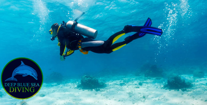 International Diving Courses